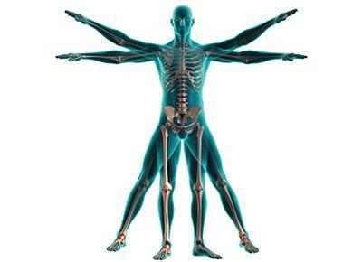 vitaminok, csontritkulás